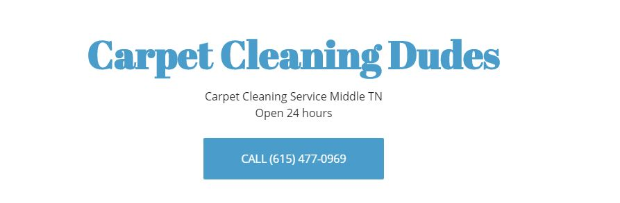 Best Options for Carpet Cleaners in Nashville - Carpet Cleaning Dudes