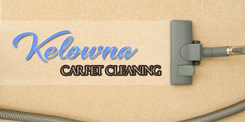 9 Best Options For Carpet Cleaners In Kelowna
