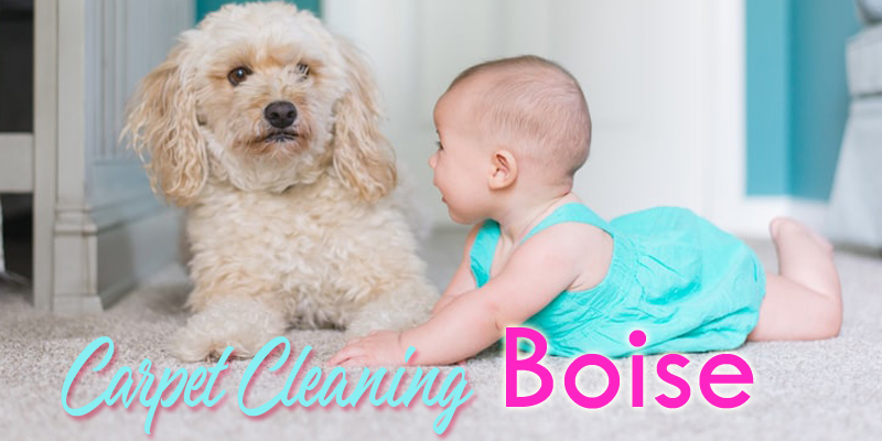 Best Carpet Cleaners Boise