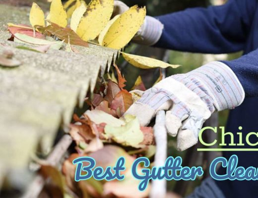 Best Gutter Cleaning in Chicago